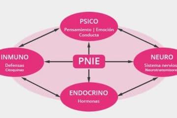 Salud Integrativa (PNIE)